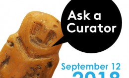 "Action ""Ask a Curator"""