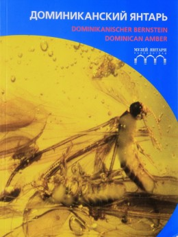 """""""Dominican Amber"""""""