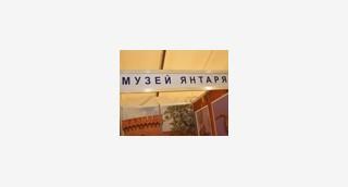 Музей принял участие в выставке «Янтарь Балтики»