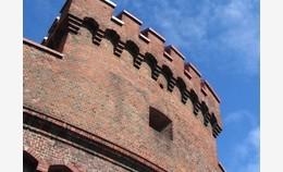Выставки и проекты Музея янтаря в 2012 году