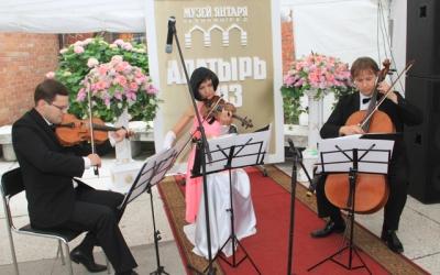 Выступление струнного трио